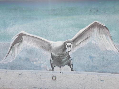 Schweizer Vogel